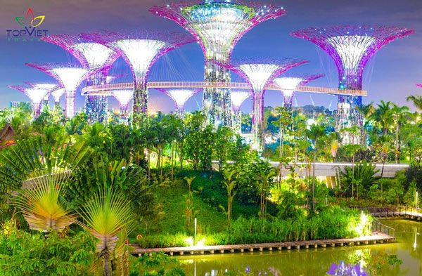 du lịch singapore vườn sinh thái gardens