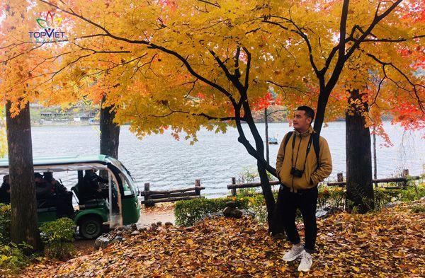 mùa thu hàn quốc